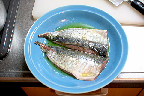 Horse_mackerel