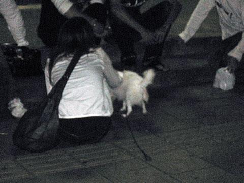 Riding_dog2